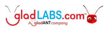 Connecting You To More For Less - GladLABS